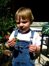 Aydin and a plant