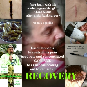 Cannabis Recovery