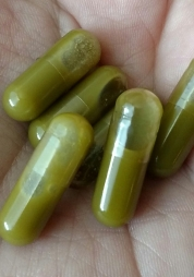 Six finished capsules in a hand